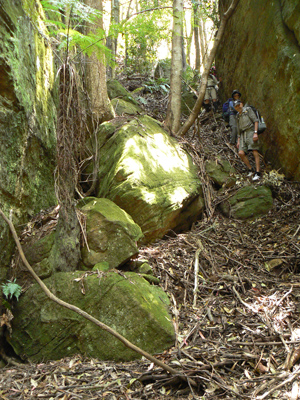 Zobels Gully