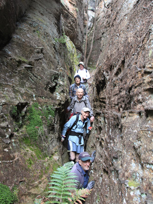 Walkers in Honeycomb Canyon